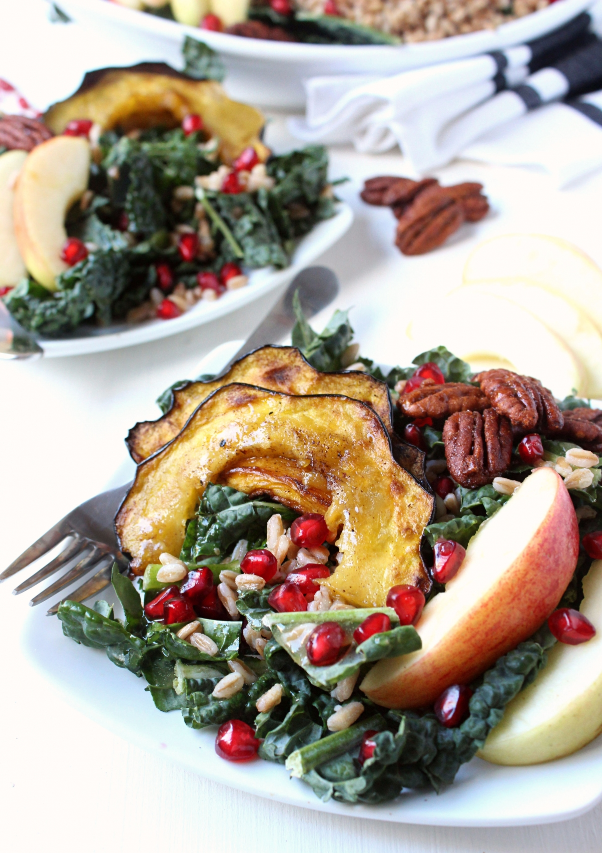 Fall Harvest Kale & Farro Salad w/ Roasted Acorn Squash, Apples, Candied Pecans, Pomegranate Seeds, & Sweet Apple Cider Vinaigrette
