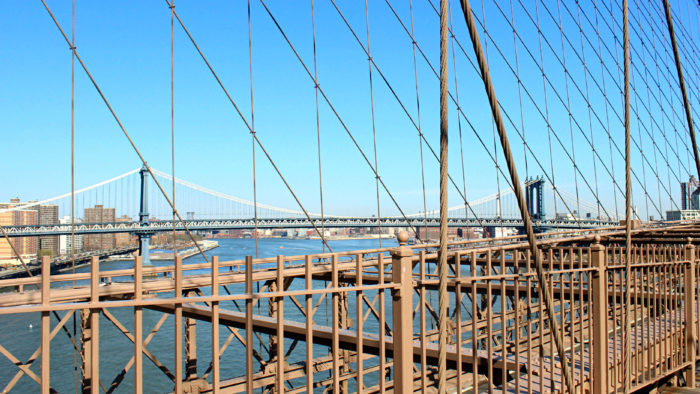 Brooklyn Bridge + Friend of a Farmer